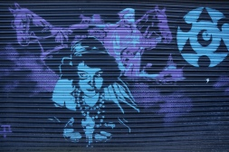 Woman on Shutters Street Art - Camden